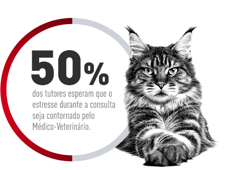Ajuda veterinaria